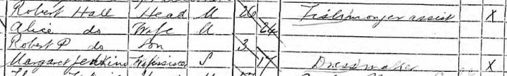 option 3 - 1891 census